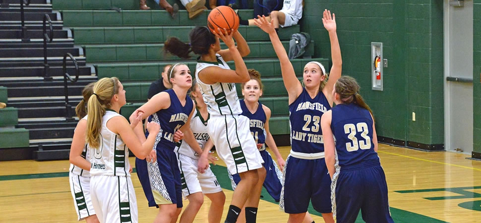 Wellsboro Girls Basketball Photo Gallery