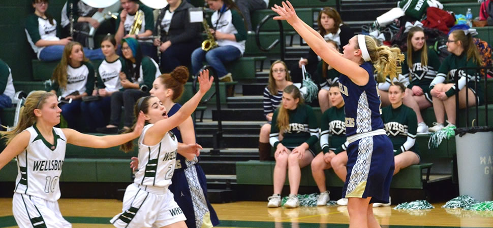 Wellsboro Girls Basketball Varsity Stat Leaders
