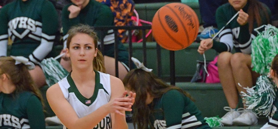 Wellsboro Girls Basketball Stats